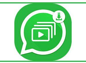 Whatsapp Status Saver Apk   Download & Share Status With Single Tap  